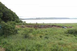 Новости ДВФУ: Археологи обнаружили под Владивостоком древнее поселение