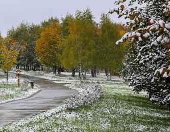 Природные парки Москвы