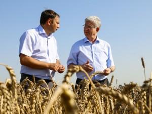 Урожай в Краснодарском крае