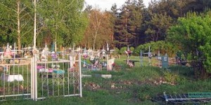 ФСБ и Прокуратура проводят проверку - В Подмосковье обнаружено неучтенное кладбище